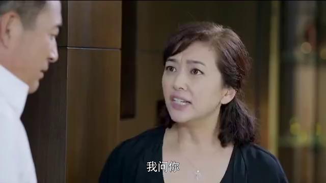 婚姻时差:李海再去找顾问咨询移民,记者拿到消息播出新闻