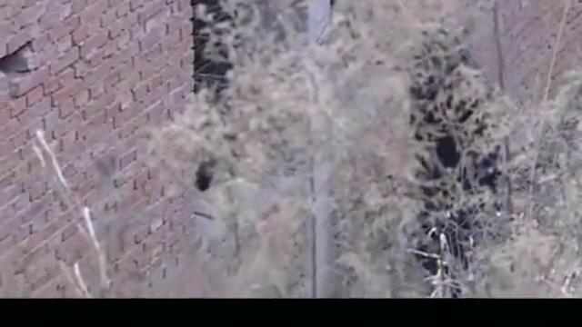 女警官荒野废墟孤身一人,对付5名持枪歹徒,这才是隐藏的高手!