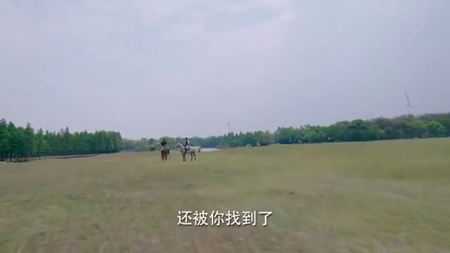 王董躲在马场还是被齐唐找到,表示自己对他的感谢