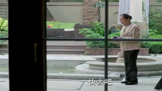 蒋歌一心念儿子,黄书朗为财产弃亲情