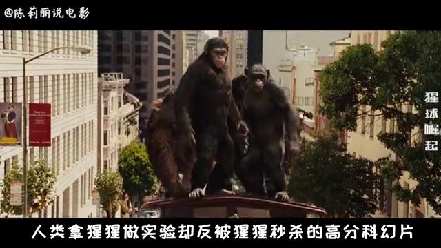 人类拿大猩猩试新药却让猩猩拥有了超高智商,反击人类无所不能!