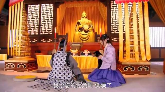 美人如画:嘉沅给师太的爱犬洗了个澡,师太说嘉沅一反常她就怕