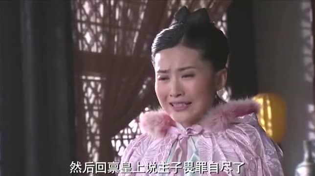 手下丫鬟瞎传消息,贵妃为除太子,当真是费尽了心机