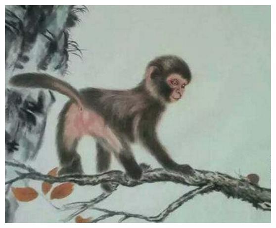 """拆东墙补西墙:生肖猴,3月起必有让你""""吃惊""""的大事发生"""