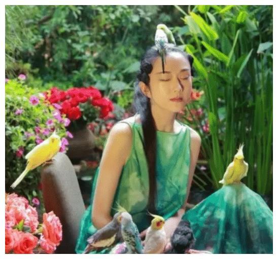 杨丽萍一年保养指甲花18万,吃饭都要助理喂,金星用4个字评价她