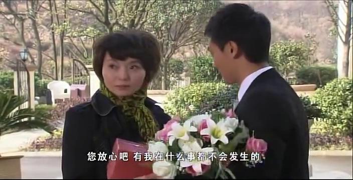 二十年前,她背弃与夏杰的婚约,二十年后,再见面百感交集