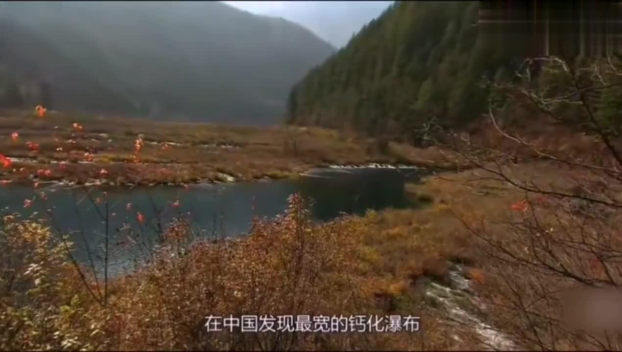 """走进九寨之八:有""""男神""""之称的诺日朗瀑布,国内钙化瀑布之首!"""