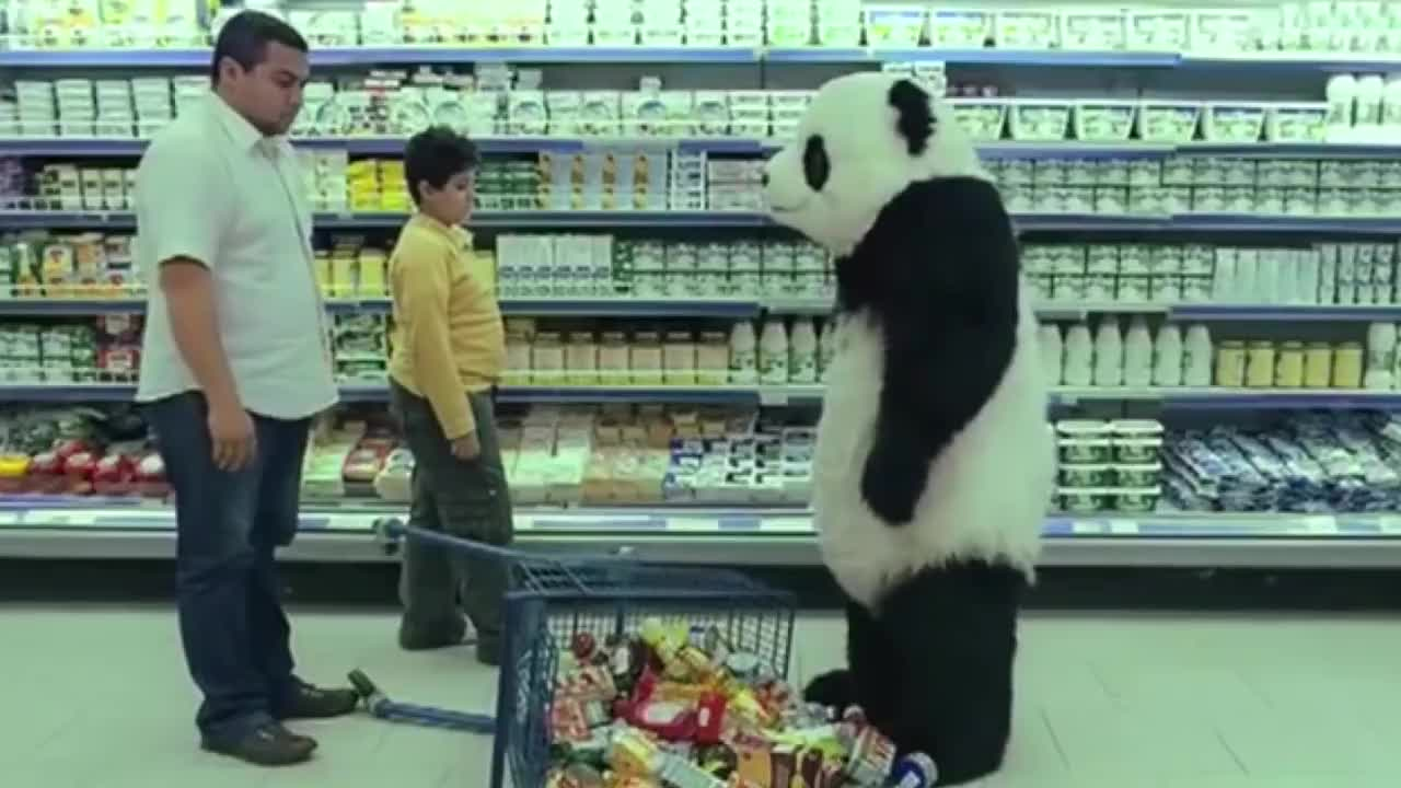 四川话爆笑配音暴躁熊猫在线怼人方言魔性笑得肚儿痛