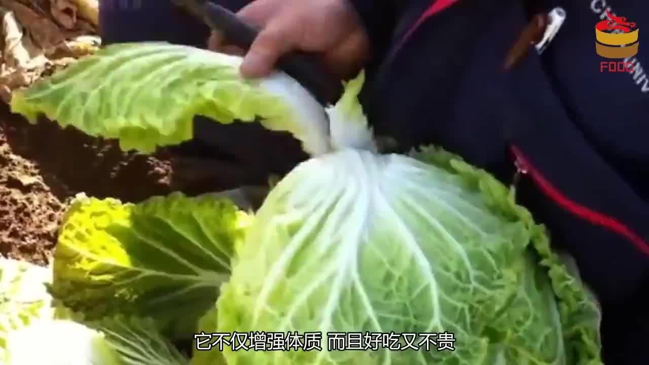 大白菜加一宝,经常吃一点,补充黄体酮,预防乳腺疾病
