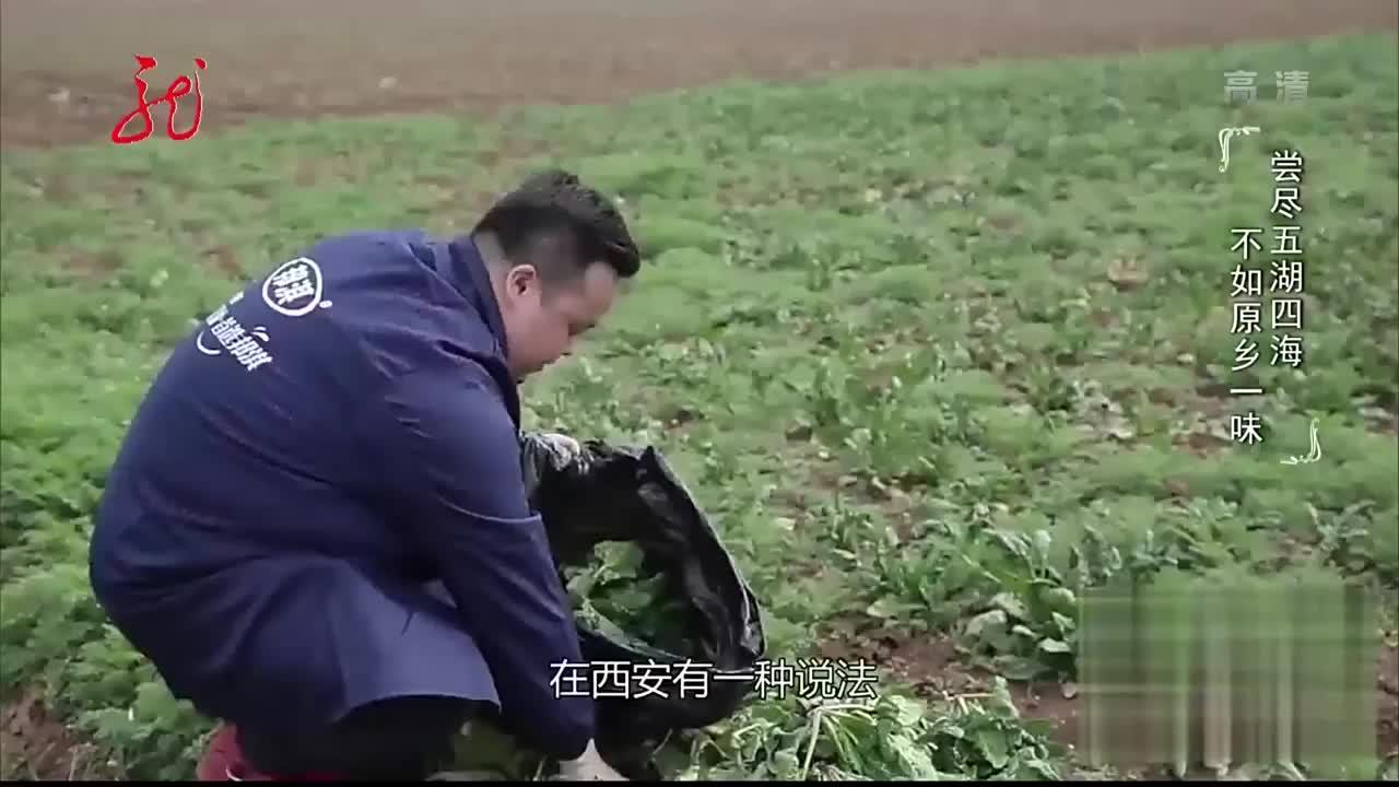 陕西名吃!男子卖菠菜面生意火爆,看人下菜