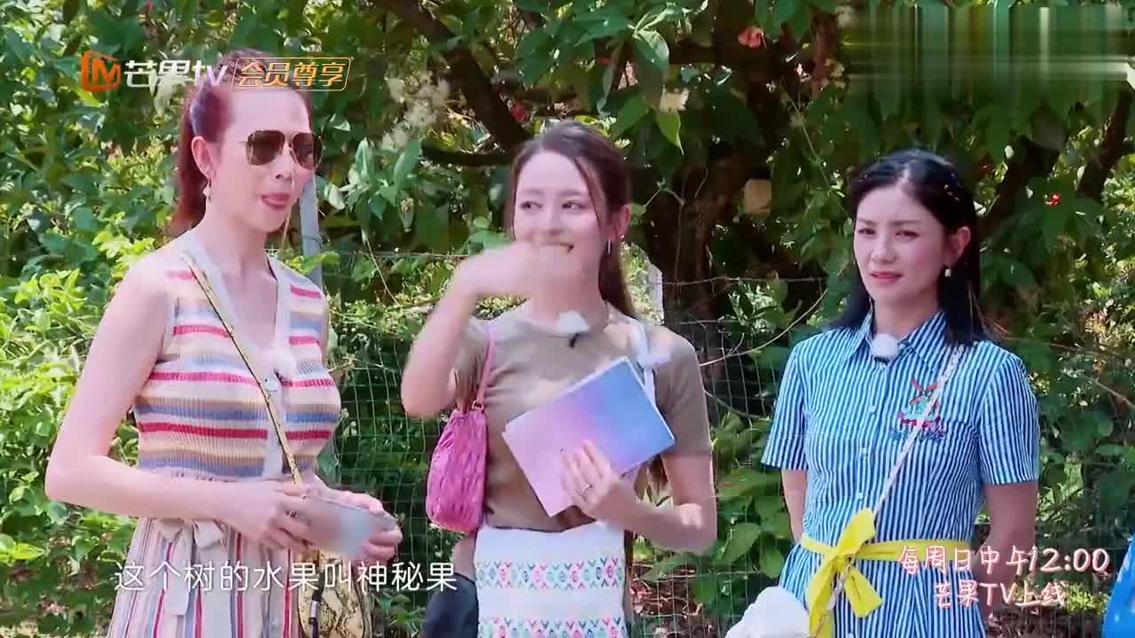 妻子4:吉娜请妻子们吃神秘果,蔡少芬一口吞下,下秒直接后悔!