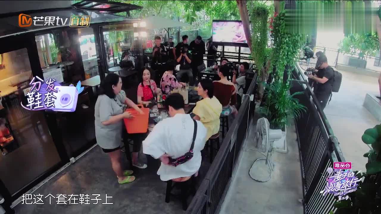 """杨千嬅参观哈士奇咖啡馆,却遭狗狗""""袭胸"""",魏大勋的眼神亮了!"""