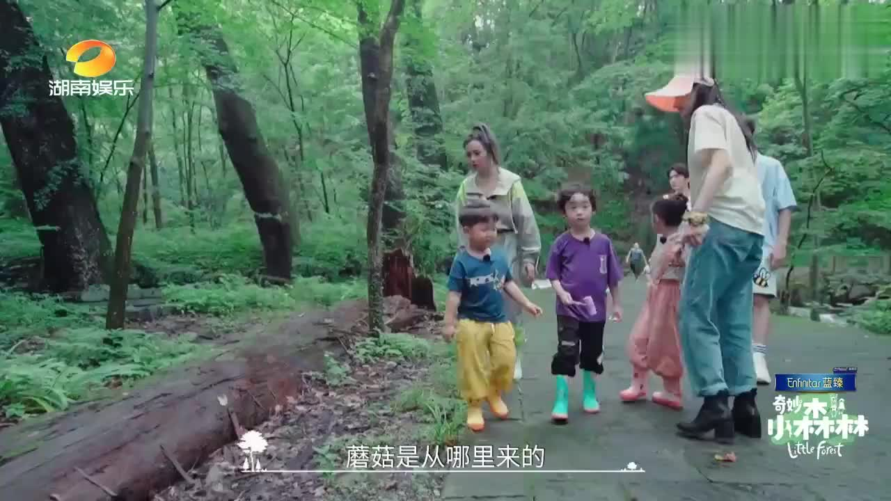 陈哲远问小朋友蘑菇是公是母,吴奇隆一拍屁股:你来解释一下!