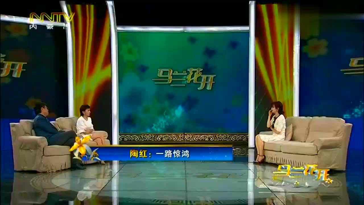 马兰花开:陶红喜爱看小说,怎料小说邀她去当演员,结果获得大奖