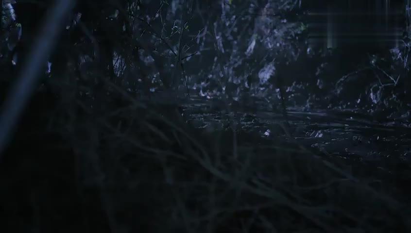 郑楚在荒郊野岭吓唬苏芒,苏芒瞬间成小媳妇,真粘人!