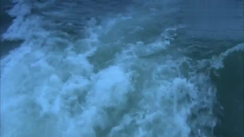 老总带美女出海,俩人坐上豪华游艇,开始浪漫之旅