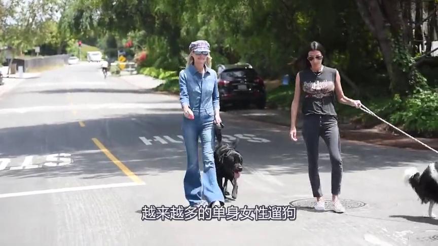 单身的女性为什么都喜欢养狗,特别是大型犬,网友:不敢相信