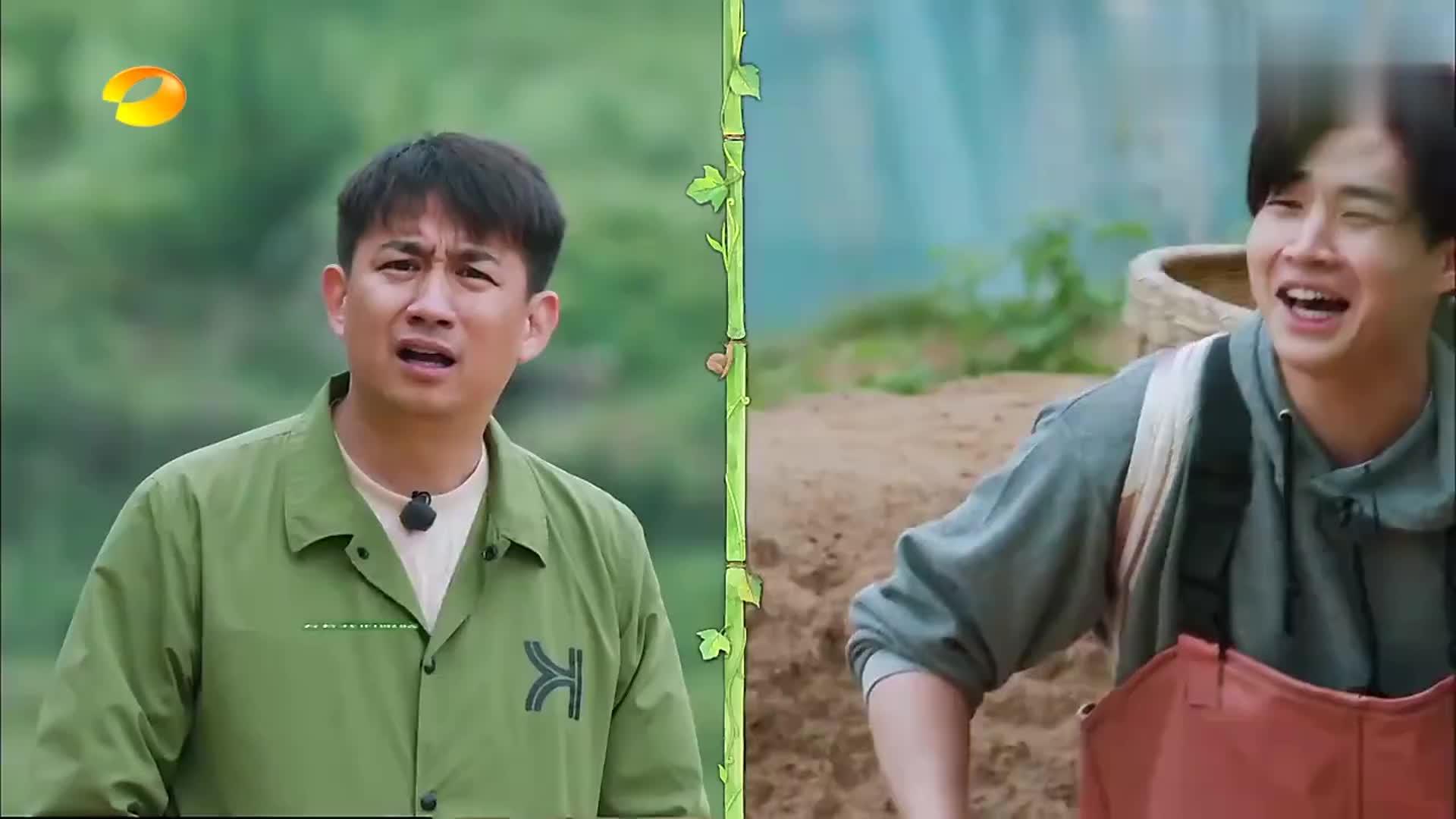 戚薇带特产辣椒面做客,黄磊说跟张杰一样,四川人的共性!