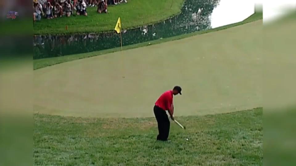 你也许不了解高尔夫,但你肯定听过老虎伍兹的名字
