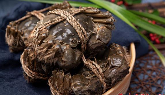 蟹太太说大闸蟹:哪种吃法是古代文人的最爱?