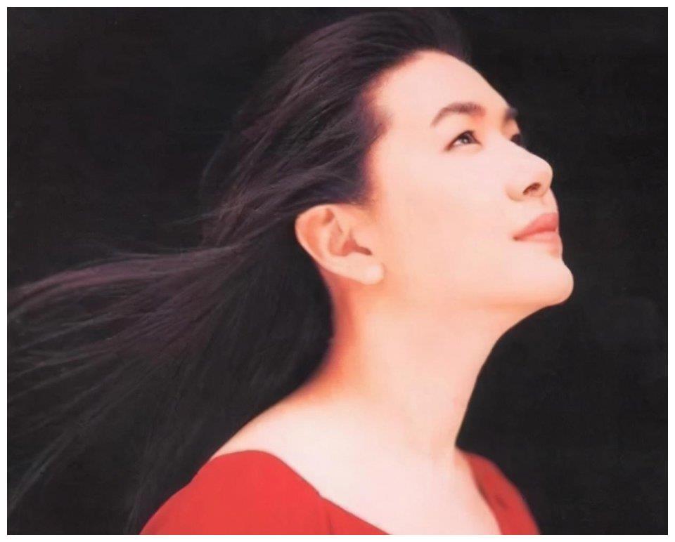 2005年,张清芳不顾一切嫁给宋学仁,现在丈夫用两亿也留不住