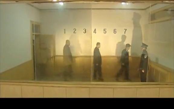警中警:老油条再次进局子,领导派女刑警审问,嫌疑人瞬间慌了