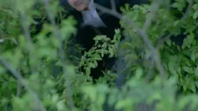 狐影:朱莉娜弹奏起钢琴,让雷震找到了熟悉的感觉