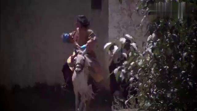 西藏秘密:搬起石头砸自己脚!洛桑放走革命党,竟被认成同谋!