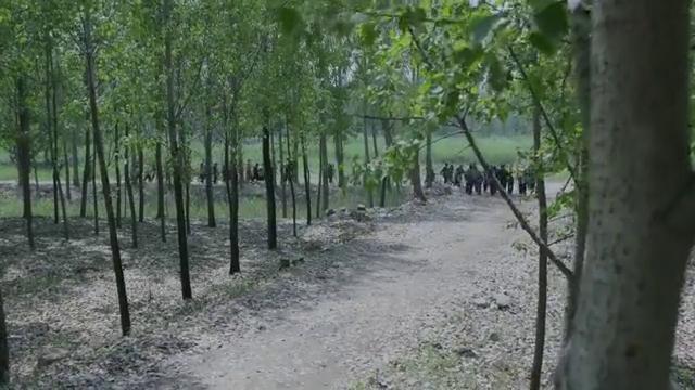兰桐花开:村里遭遇洪灾,救济粮都来了,村民们却执意要去要饭