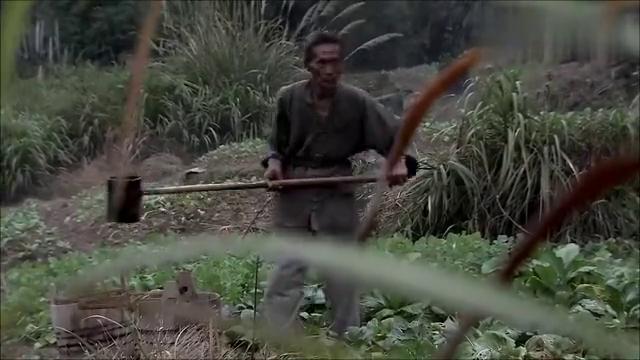 生死线:老农浇灌庄稼,却发现草里面有动静,好奇心害死了他