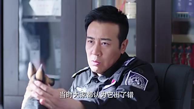 梁老一番话叫醒杜飞:你是队长,应该知道怎么保护自己的队员