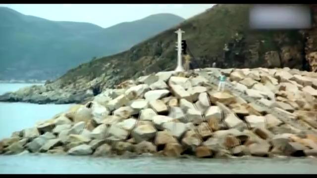 这部九十年代的港片,钟镇涛周润发组合出演,情节精彩画质感人