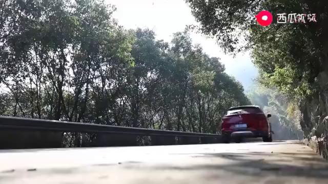 新鲜感爆棚的穿越之旅——四明山自驾游