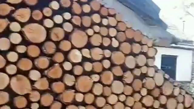 农村小伙买不起砖,就用木头搭了个院墙,太有创意了!