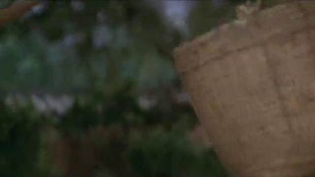 八卦棍高手一根木棍挑起百斤重的稻谷,铁桥三直接用胳膊接住