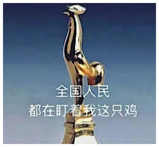 电影节最有含金量的奖莫过于金鸡、百花、华表,另外还有金马奖