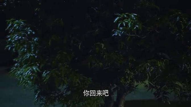 吴毅正算计怎么让梅花净身出户,梅花还傻傻的想和吴毅再续前缘