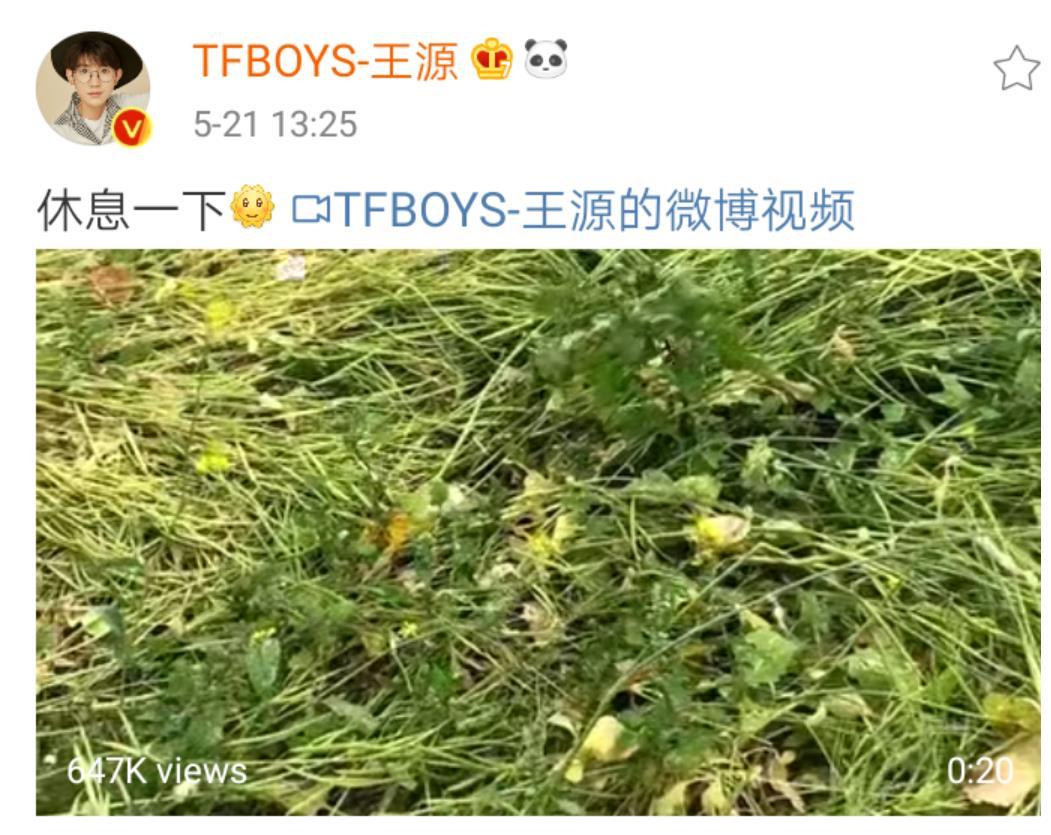 王源拍摄新物料,在休息时间追拍蝴蝶,还用了一首很甜的背景音乐