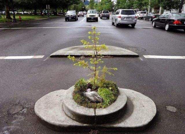 世界上最小的公园,一步就可以跨过,却还被吉尼斯纪录承认