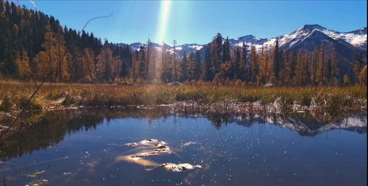 秋天最美的彩林在川西,光雾山有天下红叶第一山的美誉