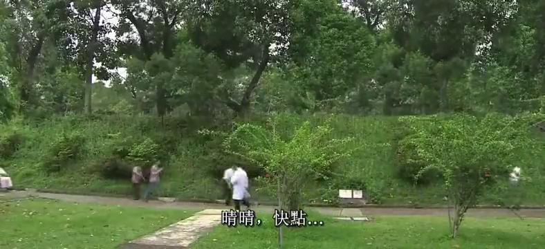 巾帼枭雄:晴晴在医院路上晕倒,刘醒醒来,伤势无大碍