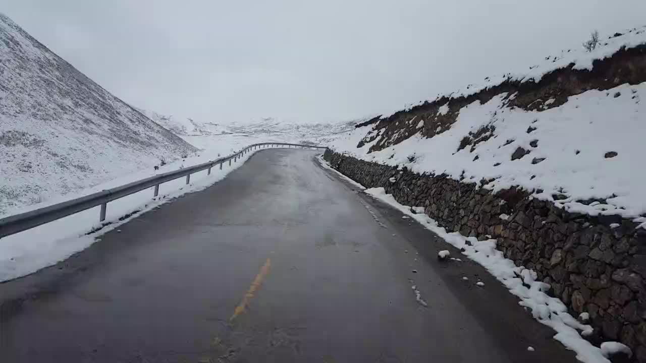 西藏昌都到青海,雪域公路,遇到约10斤重大秃鹫