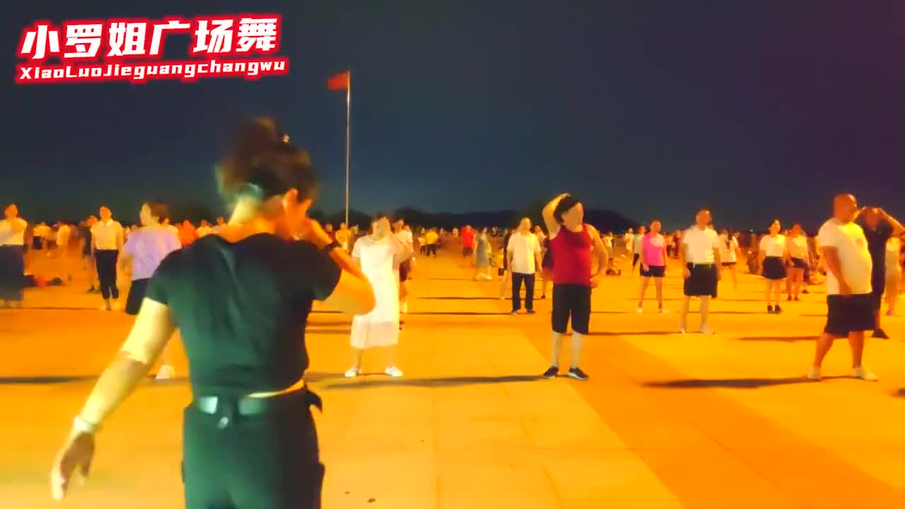 网红流行步子舞《DJ都说》龙梅子经典,简单好看!