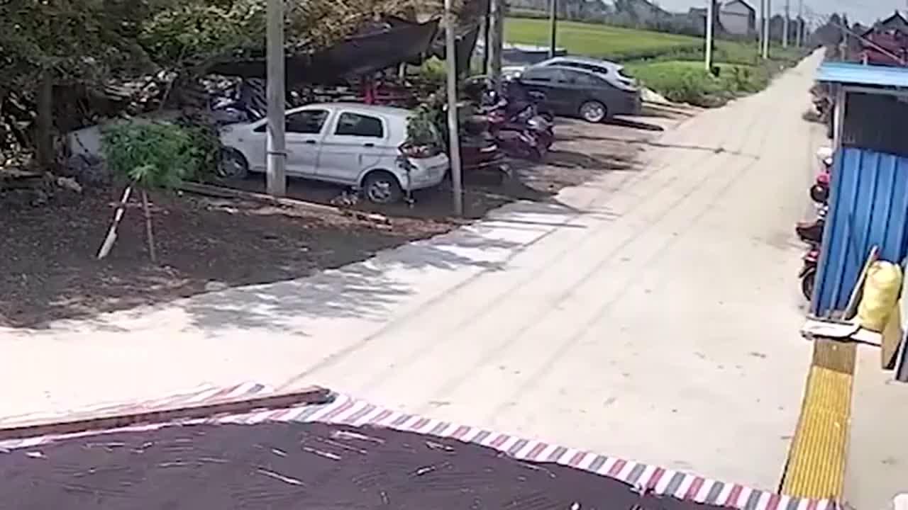 自家门前晒油菜籽,过路汽车无路可走直接碾过,谁的错?