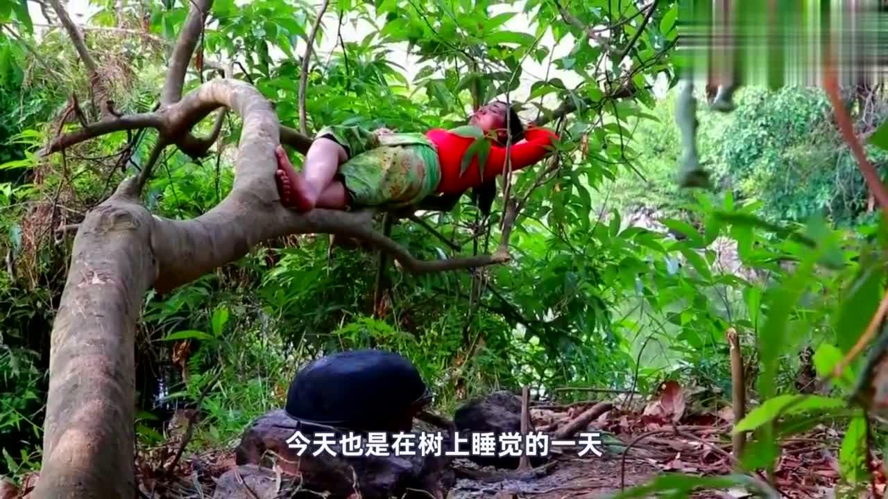 这个东南亚姑娘心太大,躺在树上都能睡得安稳