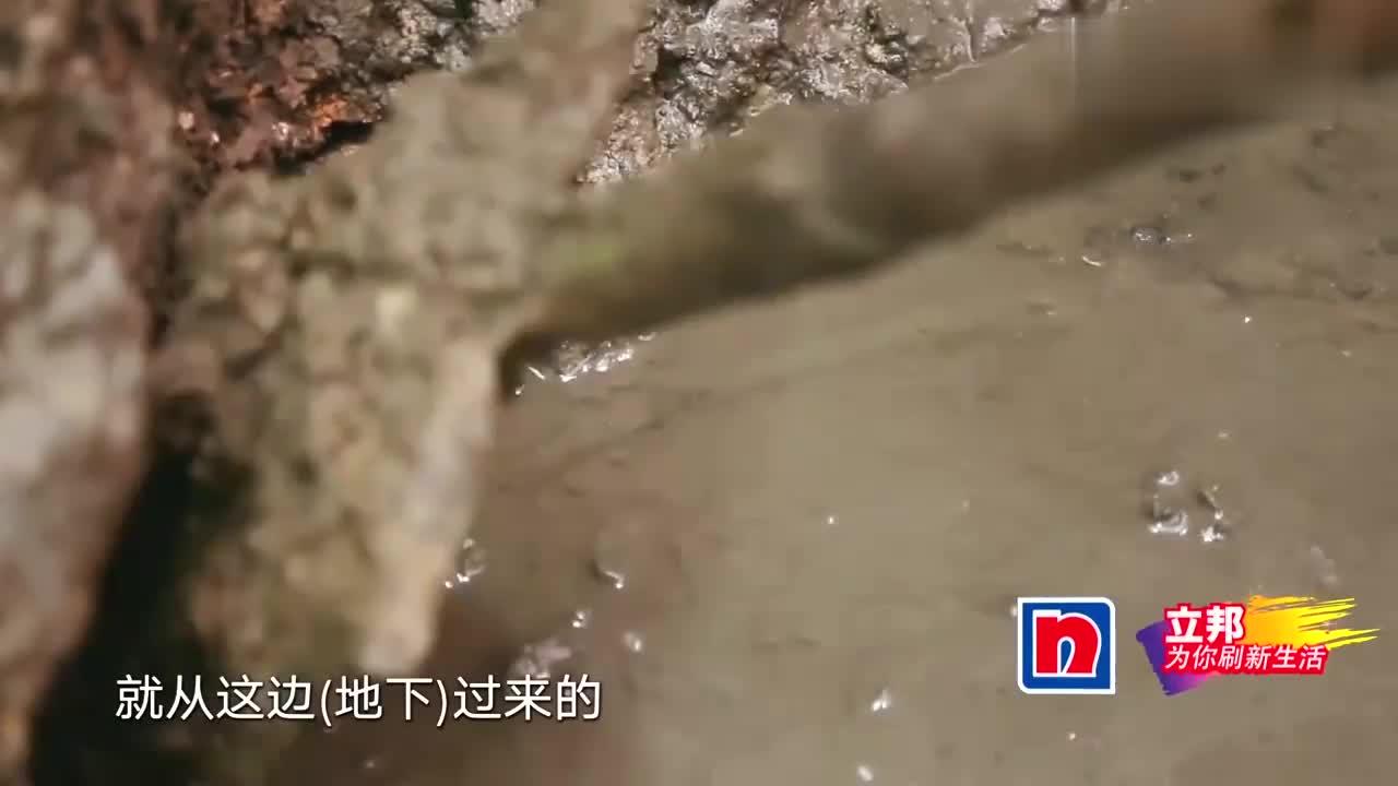 刚堵住屋内地下出水点,屋外公共水管也由于水压增大而破裂!