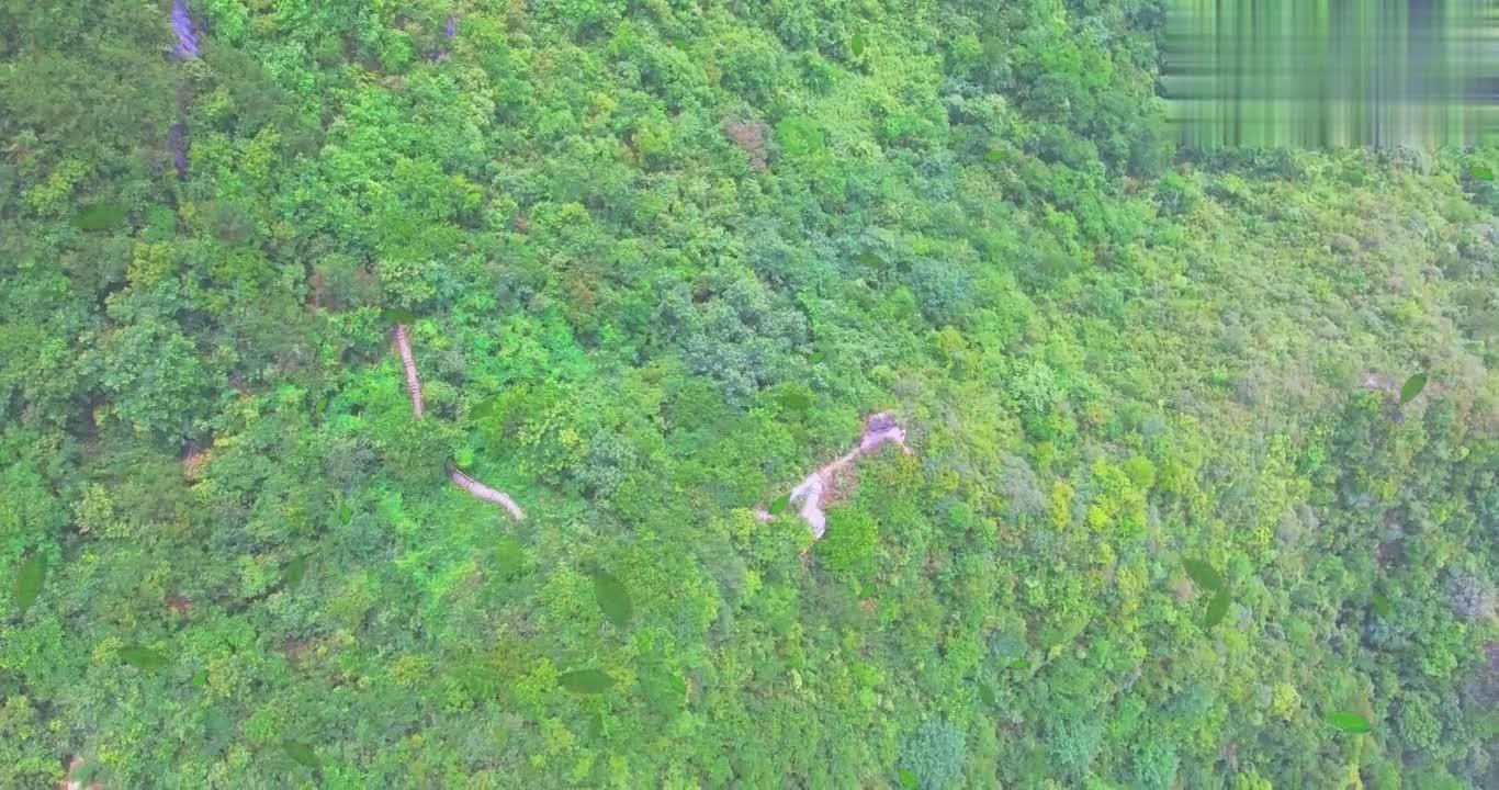 在贵州发现千万年石柱,至今依然屹立,真是太神奇了!