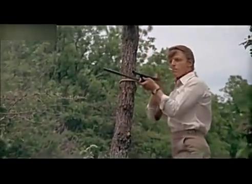这是我见过最简陋的狙击枪,经过男主调试,精确度还很高