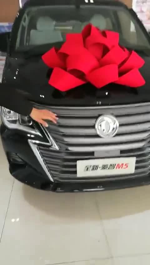 视频:东风风行新款菱智M5