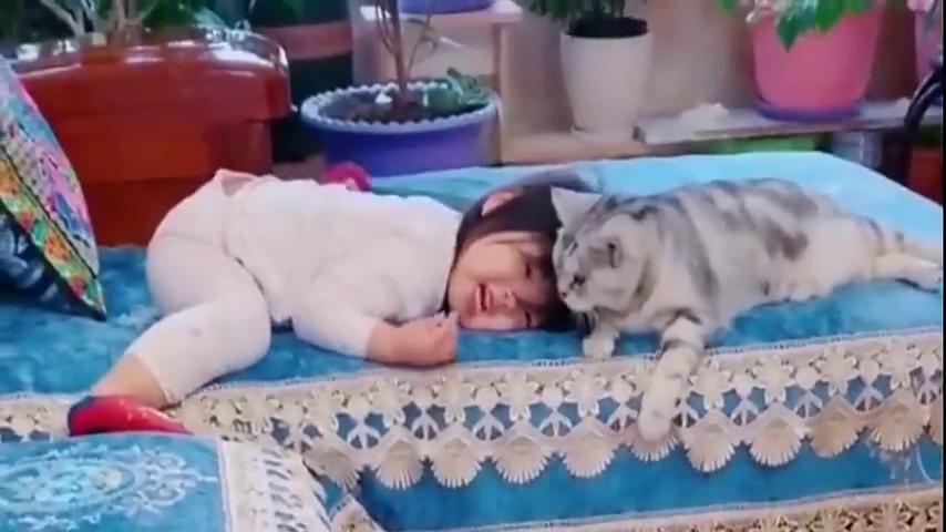 小萝莉一不高兴,下一秒,小猫咪就母性暴露瞬间爱了爱了!